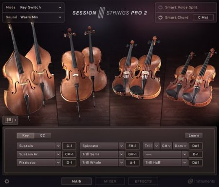 Native Instruments Session Strings Pro 2 (KONTAKT)