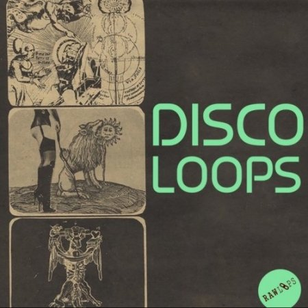 Raw Loops Disco Loops