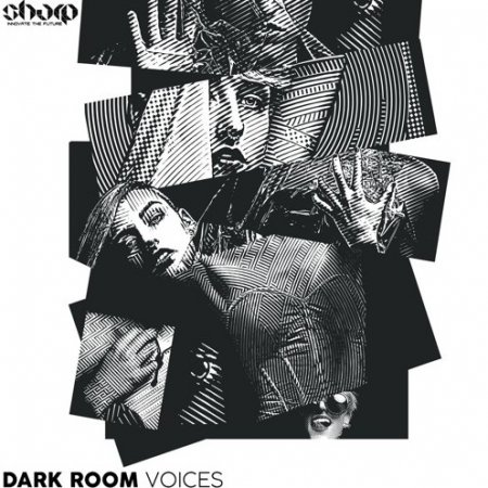 Function Loops Dark Room Voices