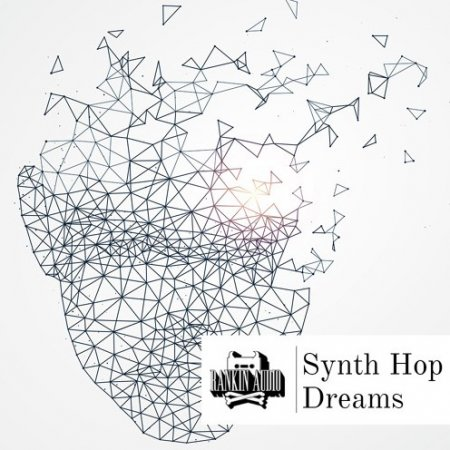 Rankin Audio Synth Hop Dreams