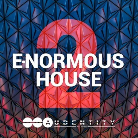 Audentity Records E-Normous House 2