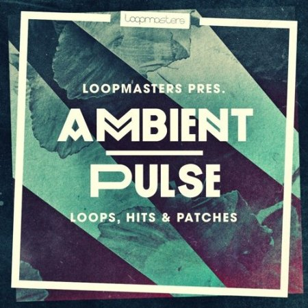 Loopmasters Ambient Pulse