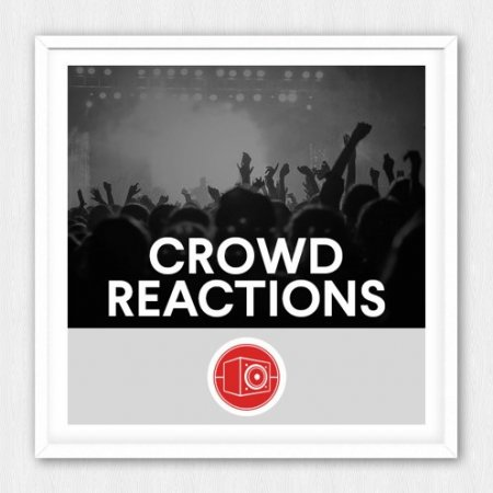 Big Room Sound Crowd Reactions
