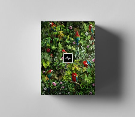 WavSupply TouchOfTrent Jungle Sample Pack