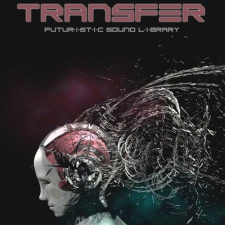 Silence+Other Sounds Transfer Lite Edition