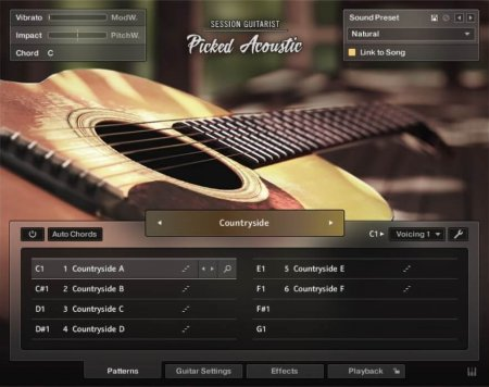 Native Instruments Session Guitarist Picked Acoustic v1.0 (KONTAKT)