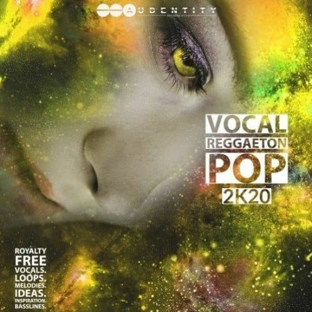 Audentity Records Vocal Reggaeton Pop 2K20