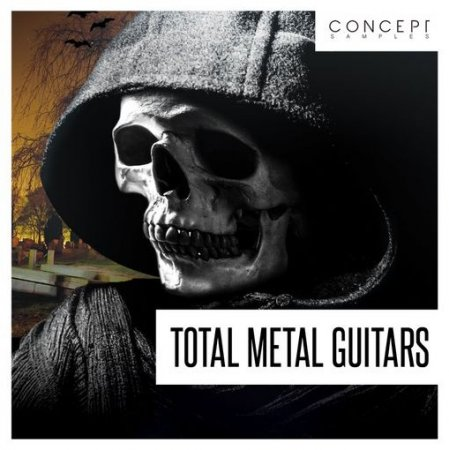 Concept Samples Total Metal Guitars