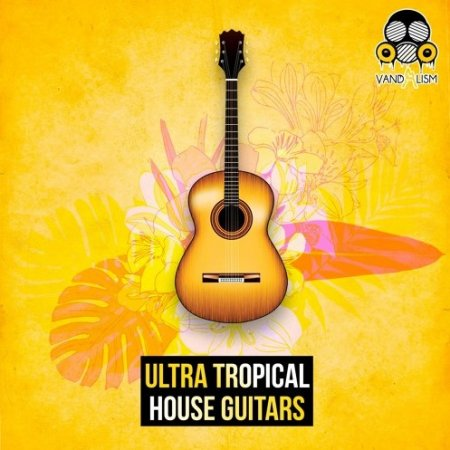 Vandalism Ultra Tropical House Guitars