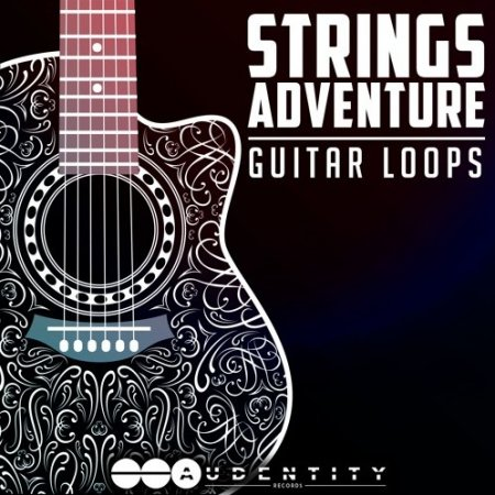 Audentity Records Strings Adventure