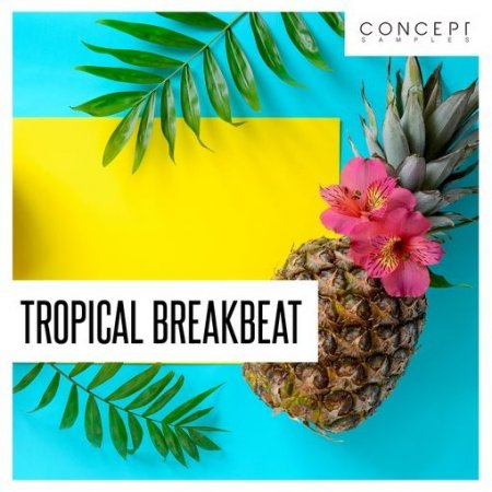Concept Samples Tropical Breakbeat